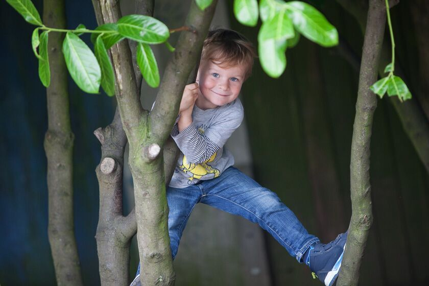 Climbing trees at Weston Nursery & Pre-school
