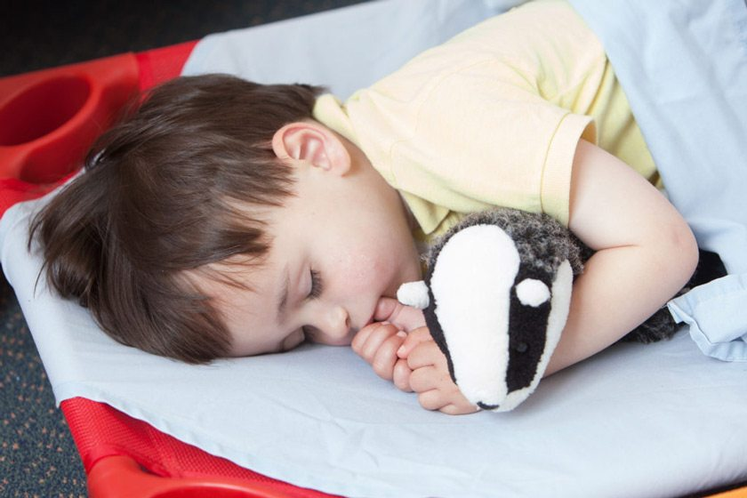 Child asleep with toy badger